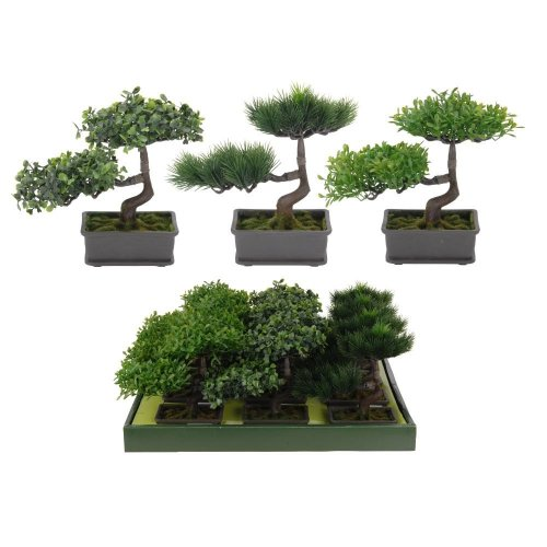 Maceta Con Bonsai 22Cm.3Ass
