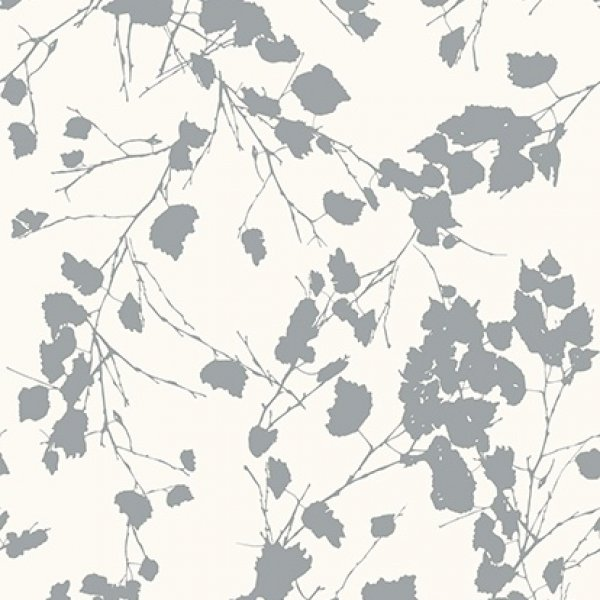 Papel de Colgadura - Birch 510221