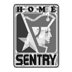 Home Sentry - Cliente